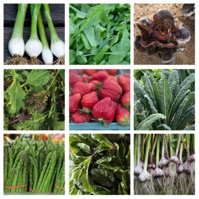 Spring veggie box