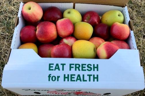 Apples / Mixed box including Honeycrisp (Half Bushel Box)