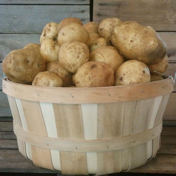 White Potatoes / 3 lb. bag