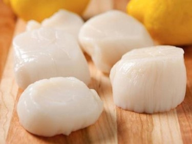 Local Chesapeake Bay Scallops (1 lb)