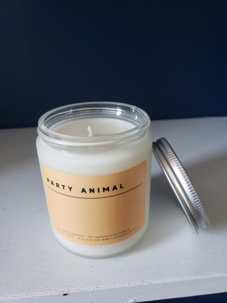 Candle: Party Animal - Sweet Orange & Lime