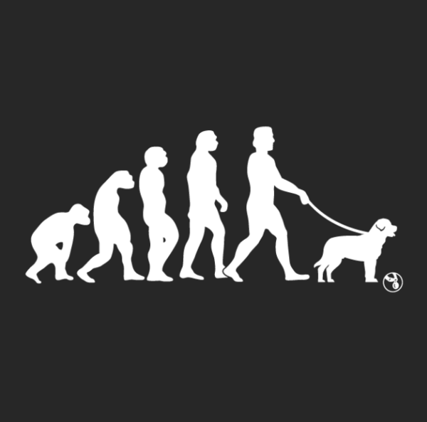 Evolution of a Dog Walker - Women's & Unisex T-Shirts - Variety of Sizes Available
