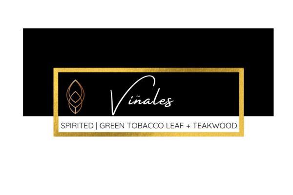 Vinales - 6 oz candle