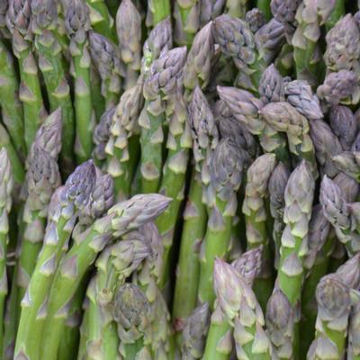 Asparagus (1/2 lb)
