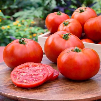 Tomatoes - Better Boy