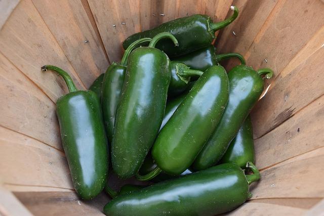 Pepper, Jalapeño