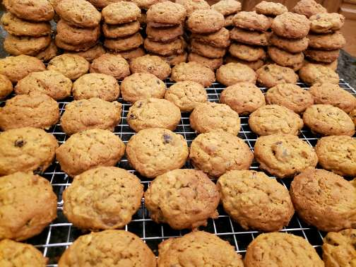 Pumpkin Oatmeal (8) Cookies