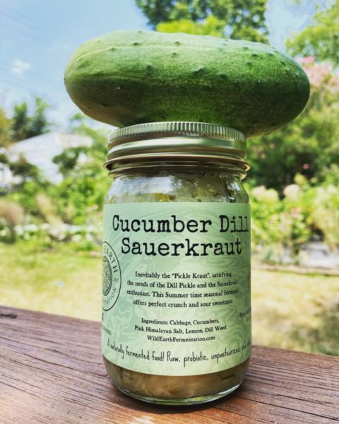 Cucumber Dill Sauerkraut