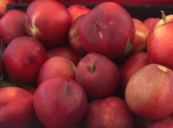 Artic Sweet Nectarines 2lbs