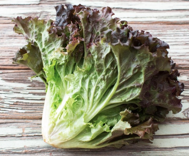 Red Leaf Lettuce, Head
