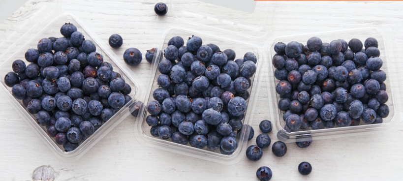 Blueberries, 3 Pack