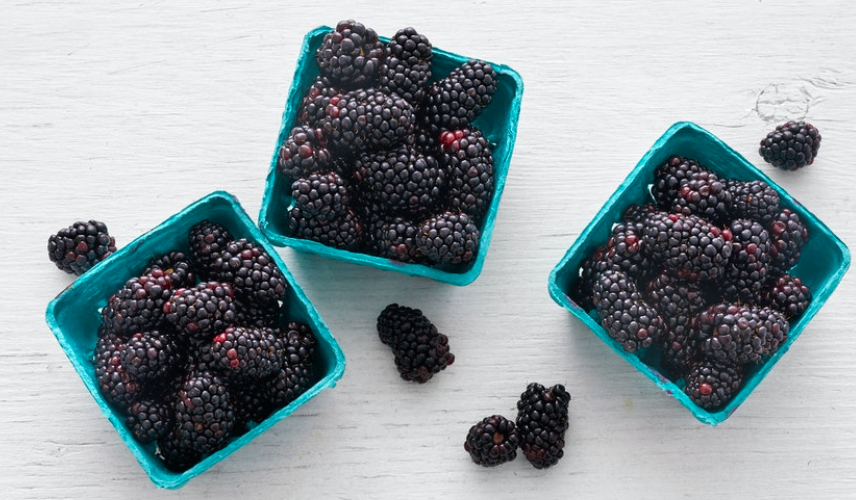 Blackberries, 3 Pack