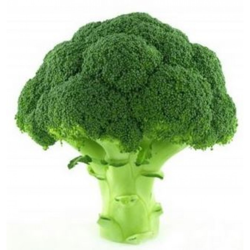 Broccoli, Large Head