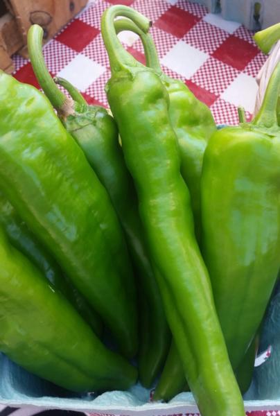 Anaheim Peppers - Organically Grown (lb.)