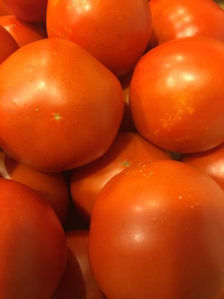 Tomato Seconds (6 lbs.)